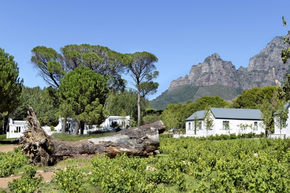 The accommodation at Boschendal Farm